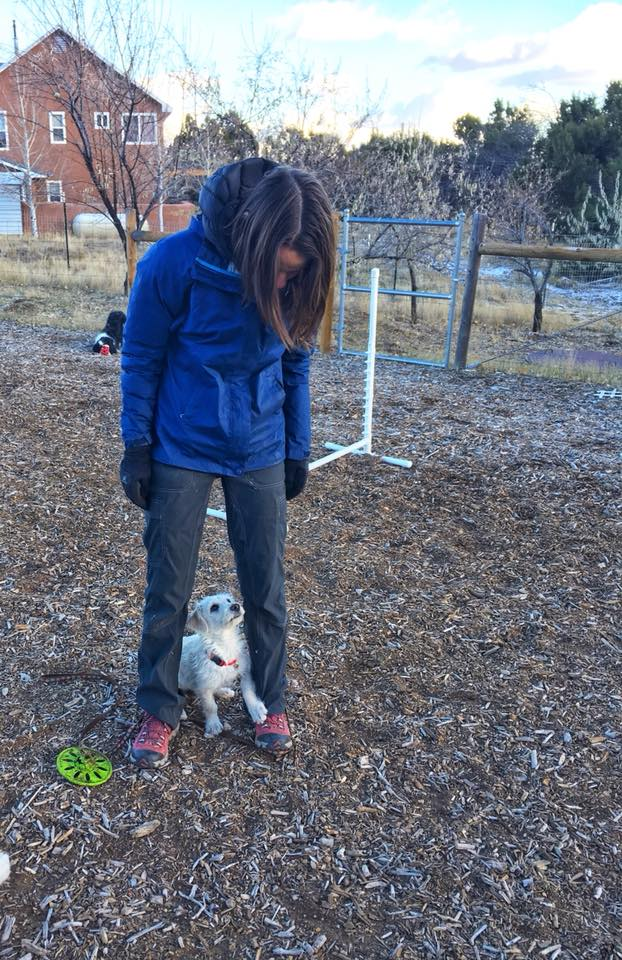 Private Dog Training Sessions in Albuquerque
