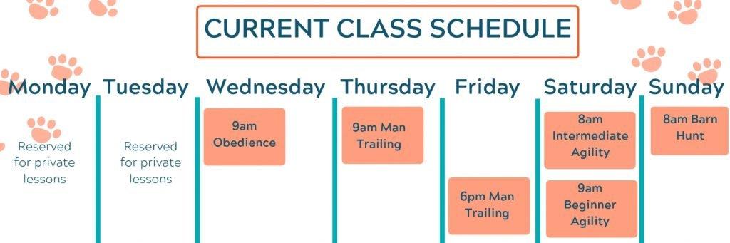dog training schedule albuquerque